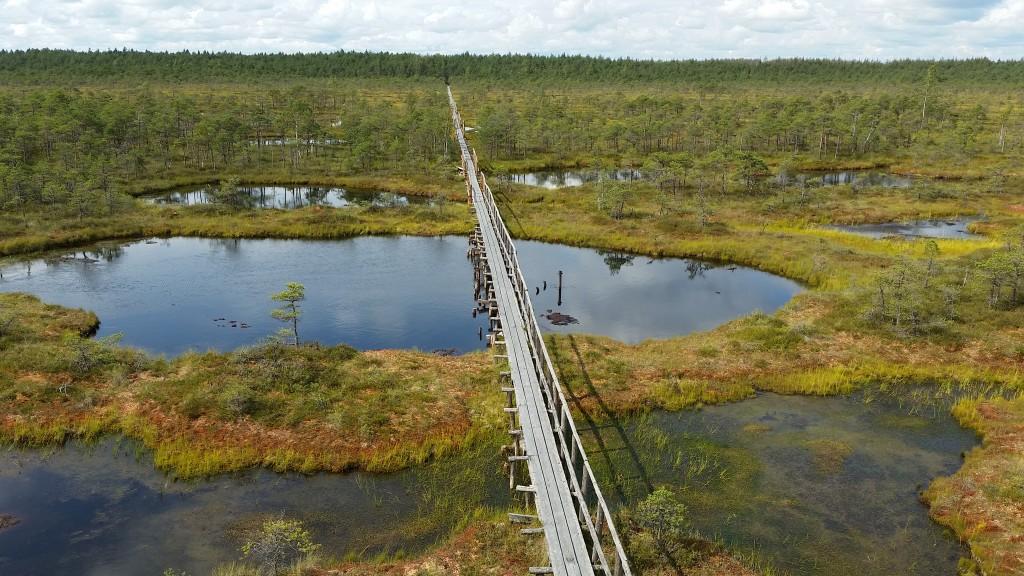 Urlaub in den baltischen Staaten