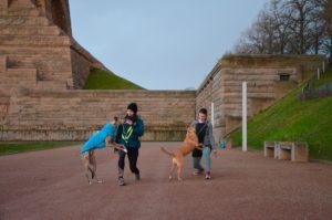Das Foto zeigt die Hundetrainerin Monique und eine Kursteilnehmerin. Die machen auf einem Weg Lunges. Bei jedem Schritt müssen sich die Hunde auf ihren Oberschenkeln abstützen und werden mit Leckerlis dazu ermutigt. Im linken Hintergrund ist das Völkerschlachtdenkmal zu sehen.